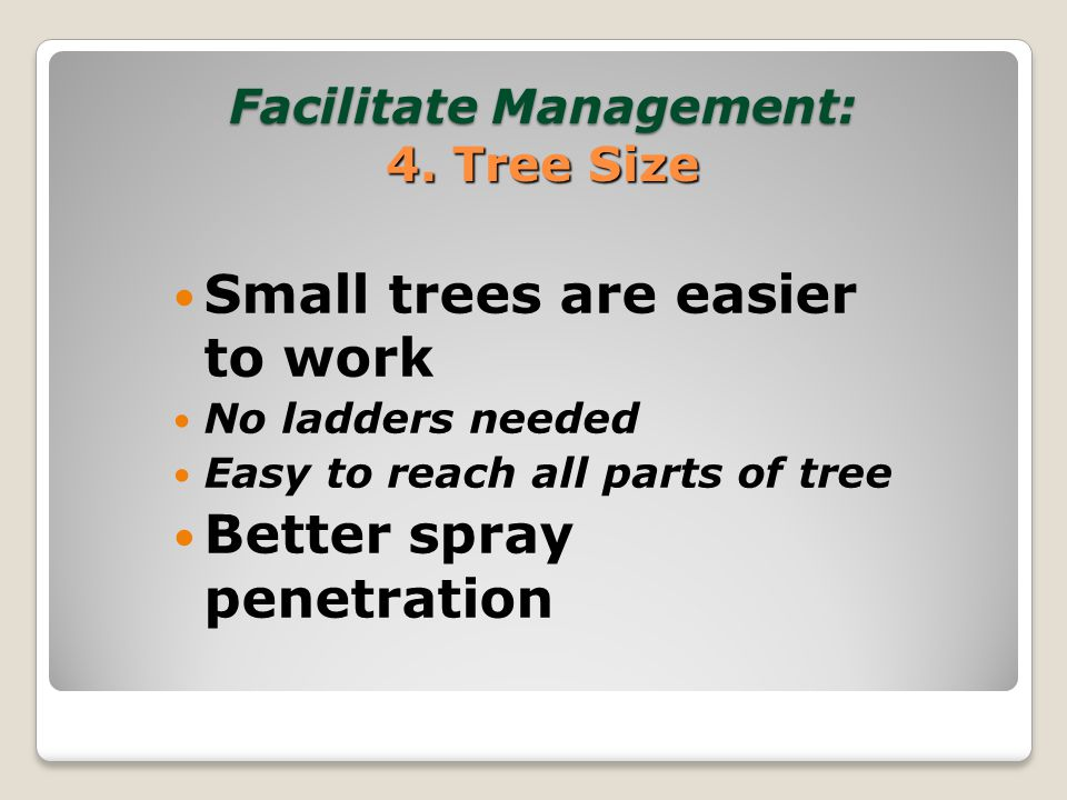 Facilitate Management of the Tree and Crop Optimize height of primary scaffolds ◦Allow space at tree base Distribute scaffolds well ◦Do not over crowd scaffolds Tree uniformity Limit tree size with summer and winter pruning