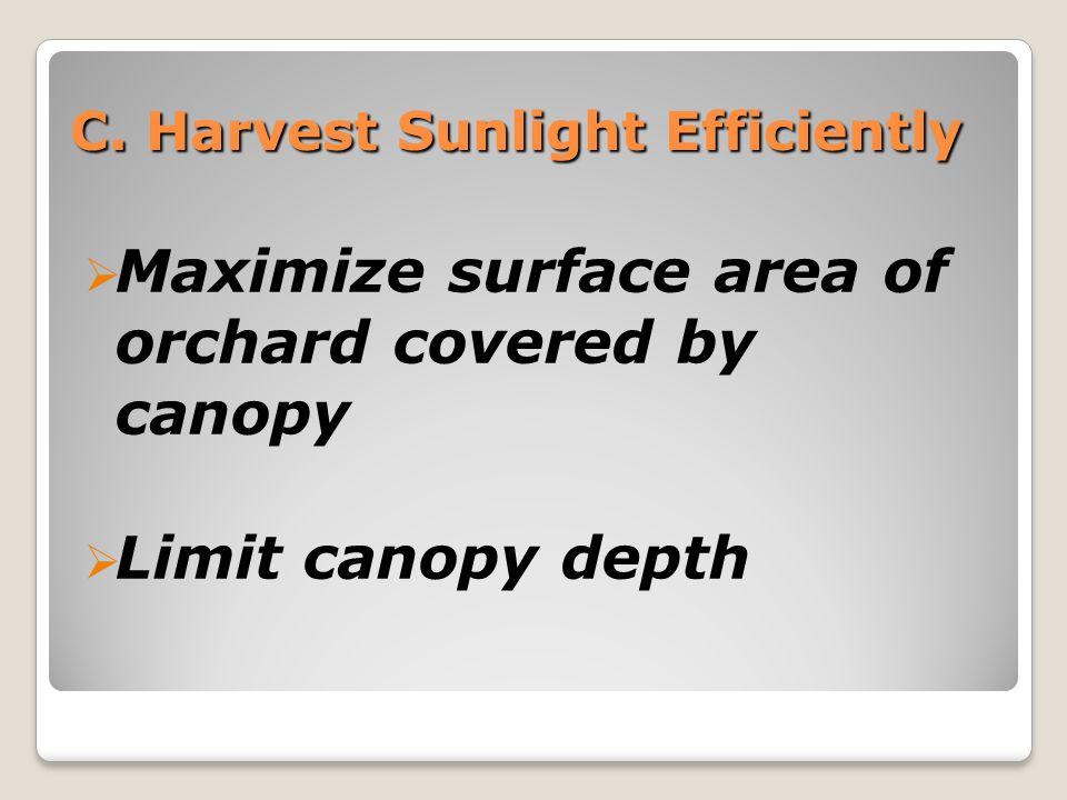 Harvest Sunlight Efficiently: 1.