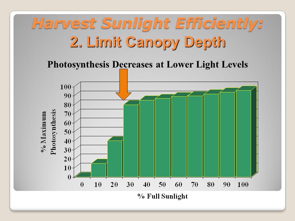 Harvest Sunlight Harvest Efficiently: Poor fruit color Poor fruit distribution ◦Less fruit bud development Poor fruit size Poor fruit flavor Poor Light Intensity Leads to