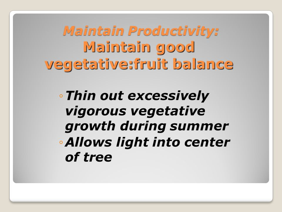 Maintain Productivity: Maintain good vegetative/fruit balance Remove excessive fruiting wood In peaches - remove 40-60% of new fruiting wood each year