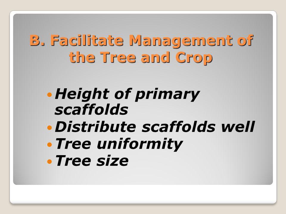 Facilitate Management: 1.