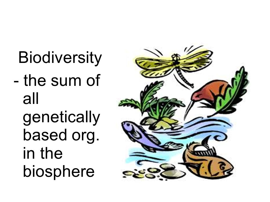 Other types of diversity ~ Ecosystem diversity - includes habitats, communities, and processes ~ Species diversity - # of dif.