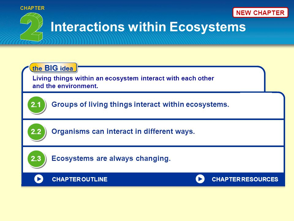 VOCABULARY KEY CONCEPT CHAPTER HOME habitat population niche Groups of living things interact within ecosystems.