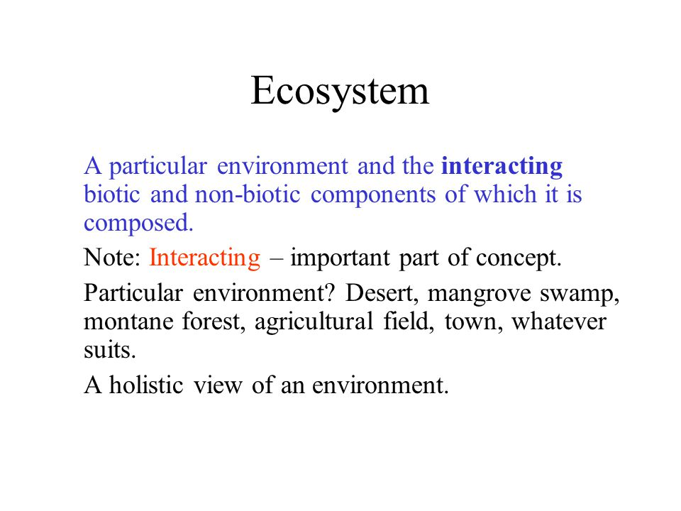 Ecosystem Needs: Energy Flow Most energy from sun –Some from earth's core as heat Photosynthesis converts sun's light energy to chemical energy Chemical energy transformed into –Other forms of chemical energy –Heat energy –Kinetic (motion) energy –Light energy