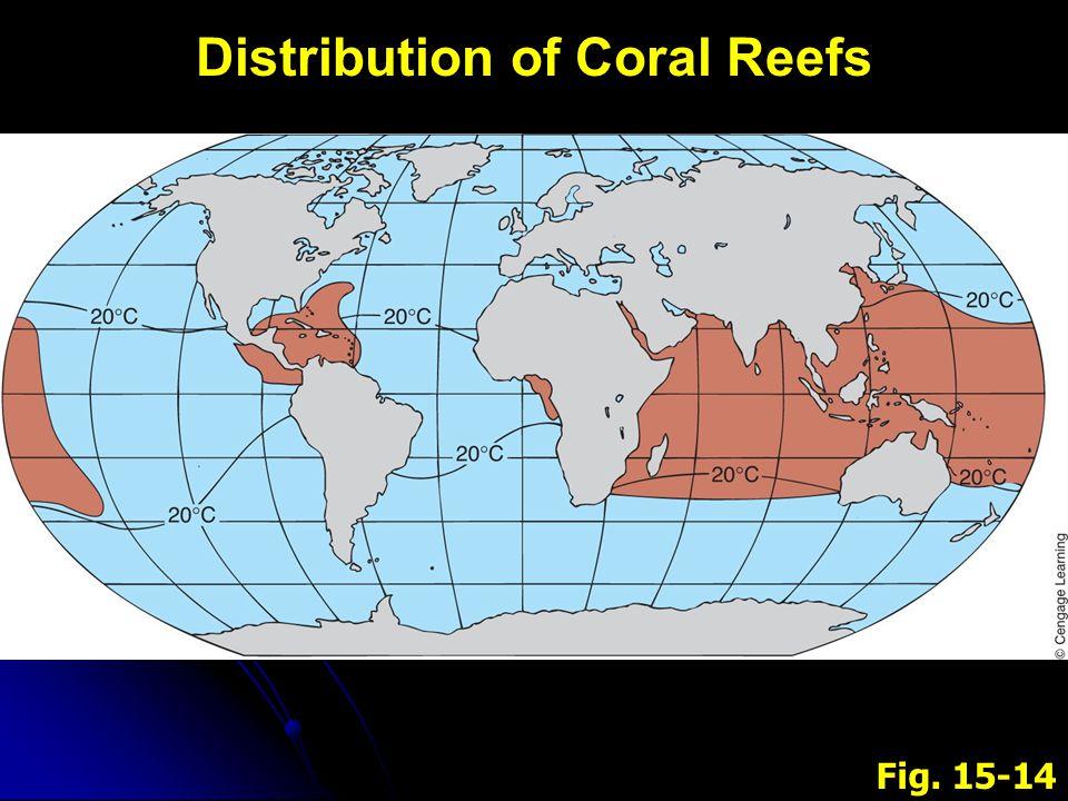 V.V.Coral Reefs B. B.Conditions 3.