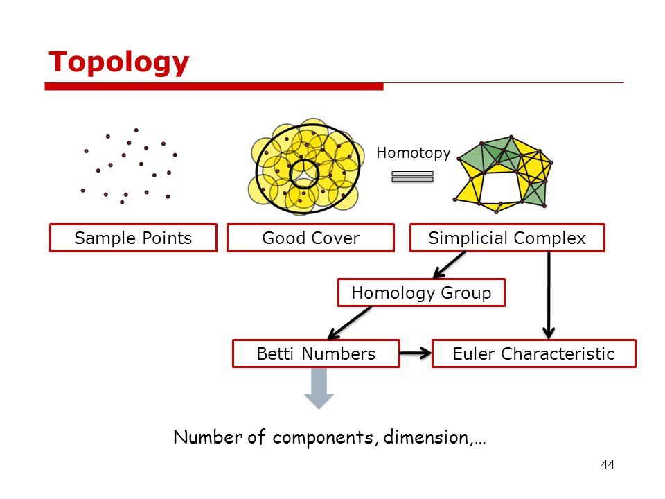 Topology The Euler Characteristic is a topological invariant, a number that describes one aspect of a topological space's shape or structure.