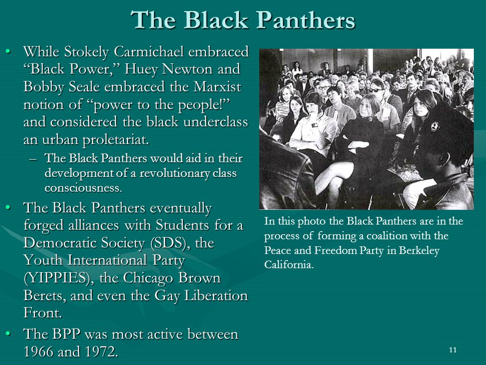 12 The Black Panthers The Black Panthers were not very well understood by mainstream whites, however.