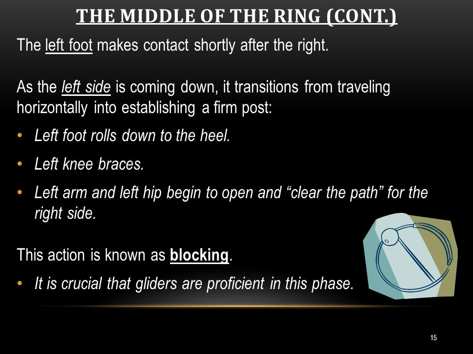 THE MIDDLE OF THE RING (CONT.) 16 Double Support Phase - both feet in contact with the ground.
