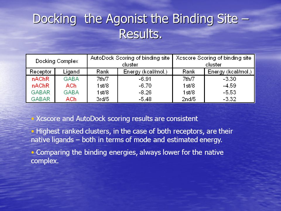 Conclusions of docking studies Anesthetics bind most favorably to a site that is consistent with the experimental evidence.