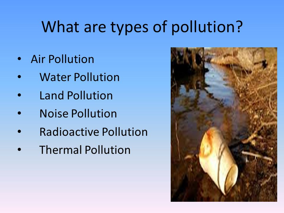 Who is water pollution harmful to.