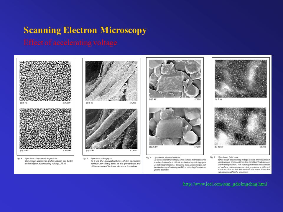 Scanning Electron Microscopy Effect of beam current and spot size http://www.jeol.com/sem_gde/imgchng.html