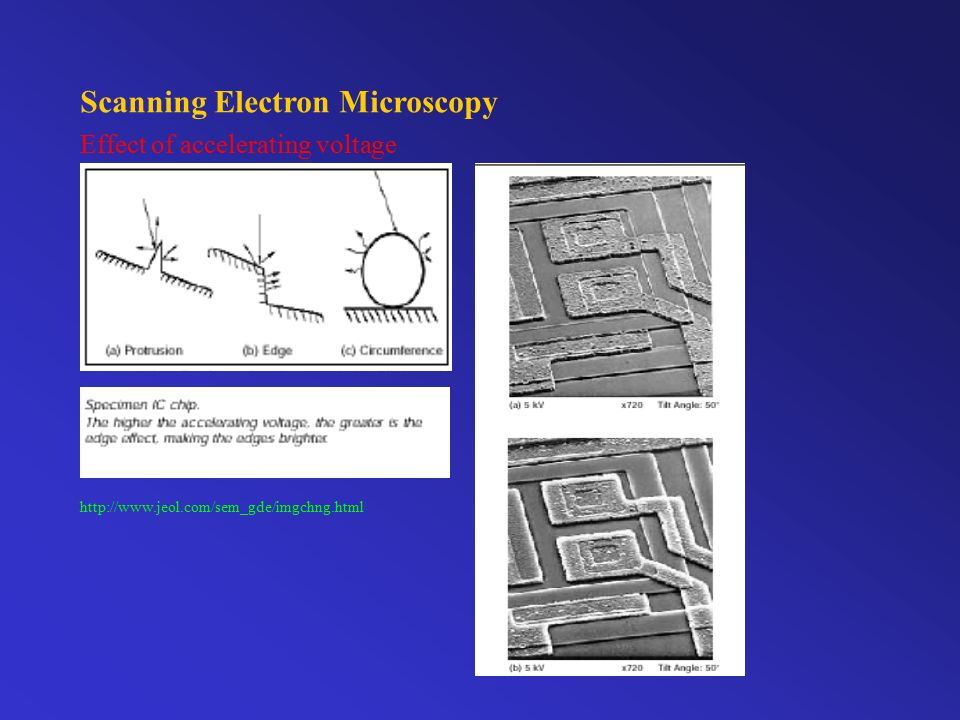 Scanning Electron Microscopy Effect of accelerating voltage http://www.jeol.com/sem_gde/imgchng.html