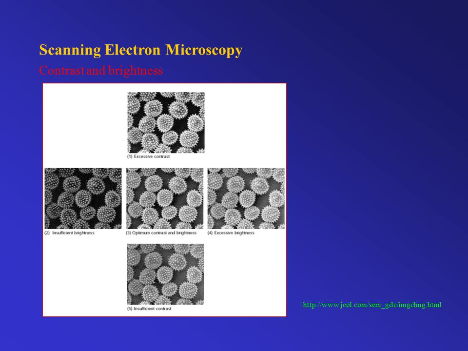 Scanning Electron Microscopy Astigmatism http://www.jeol.com/sem_gde/imgchng.html