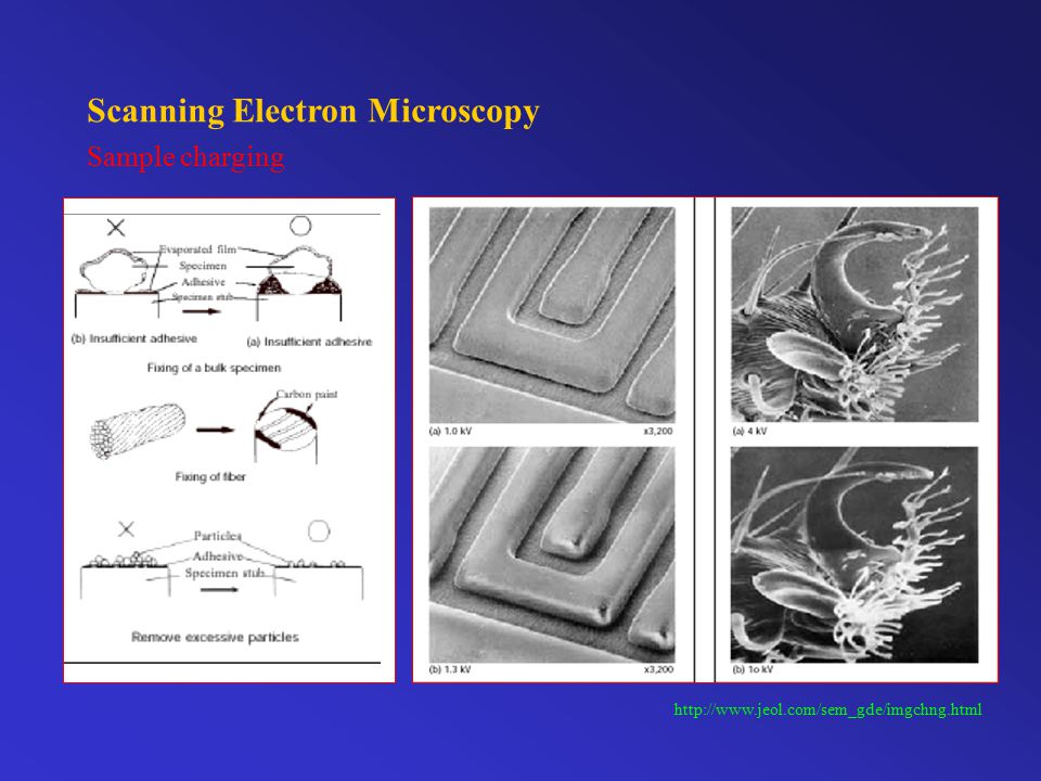 Scanning Electron Microscopy Preventing charging by thin film coating http://www.jeol.com/sem_gde/imgchng.html