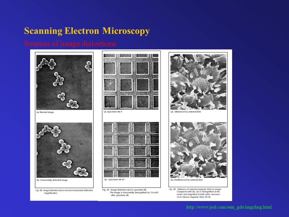 Scanning Electron Microscopy Influence of external disturbances http://www.jeol.com/sem_gde/imgchng.html