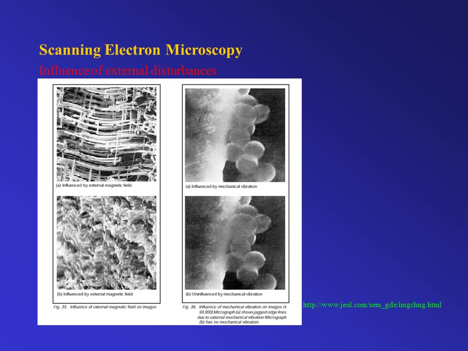 Scanning Electron Microscopy Importance of sample preparation http://www.jeol.com/sem_gde/imgchng.html