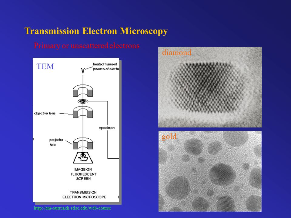 Transmission Electron Microscopy Catalyst particle size distribution