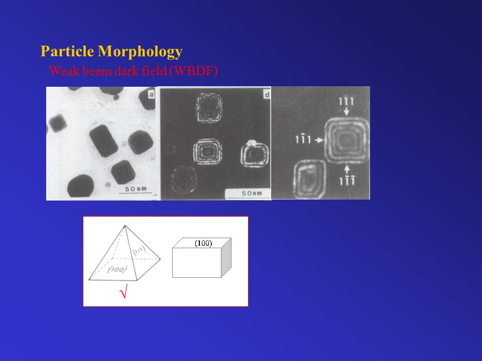Particle Morphology SZDF and WBDF techniques