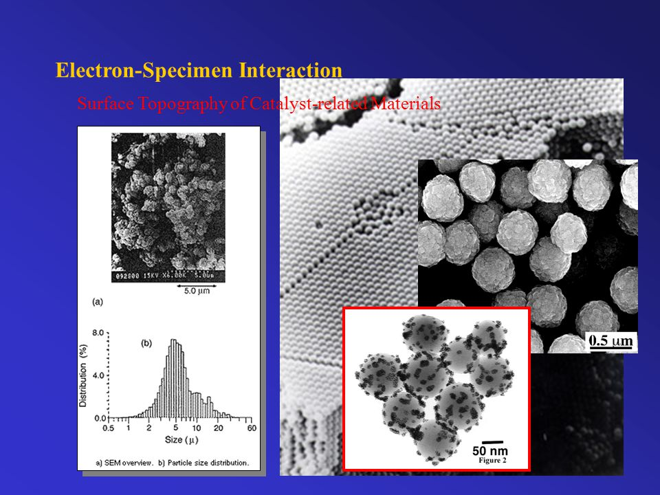 Electron-Specimen Interaction Primary or unscattered electrons diamond gold TEM
