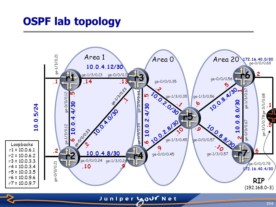 255 OSPF LAB Configuration Requirements, 1  Set up the routers according to the OSPF lab topology  RID based on lo0 address and reachable via OSPF for all routers.