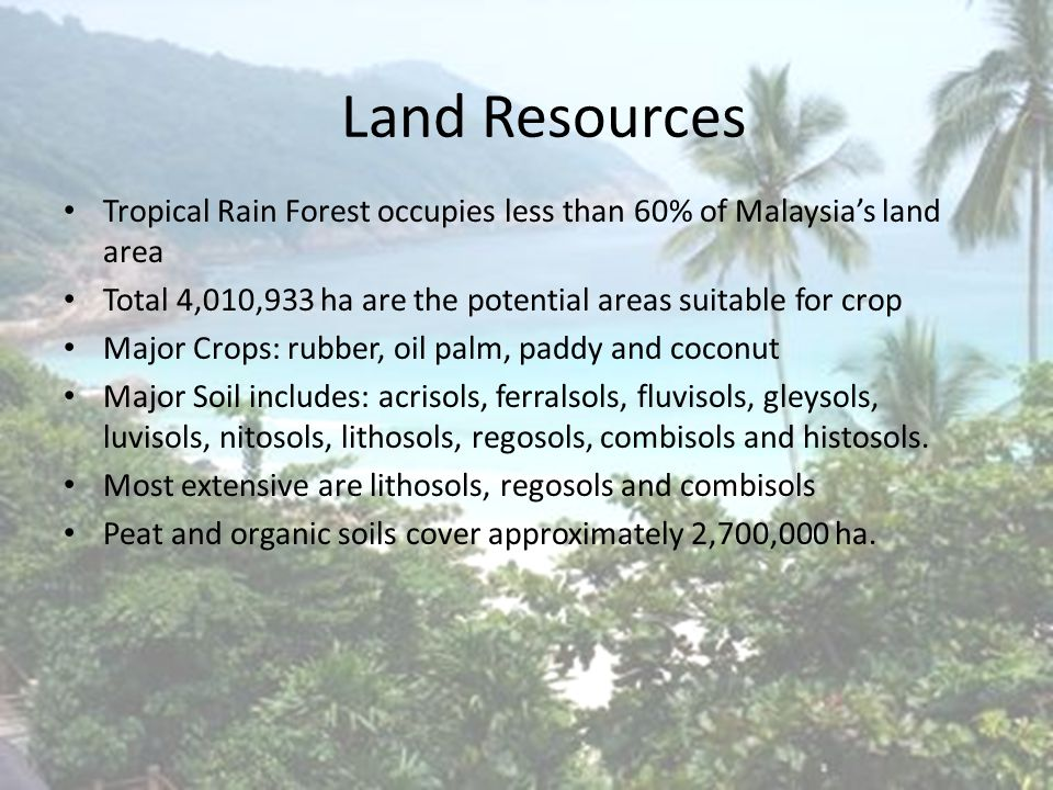 Introduction Integration of forest species into existing agriculture land and animal husbandary Third National Agricultural Policy (NAP3) encourage the integration of forest trees with cultivation of food crops, rearing of livestock to maximize utilization and returns on the same piece of land.