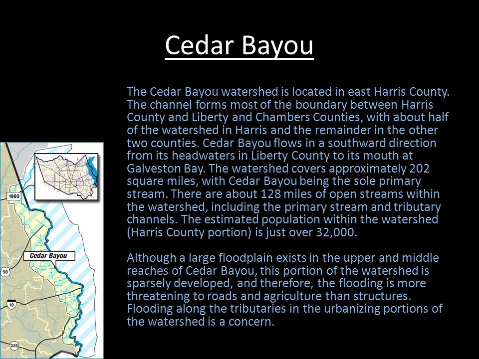 Cedar Bayou Continued Most of the primary stream and floodplain is environmentally sensitive due to the saltwater marshlands in the lower reaches and the undeveloped natural channel reaches upstream of Baytown.
