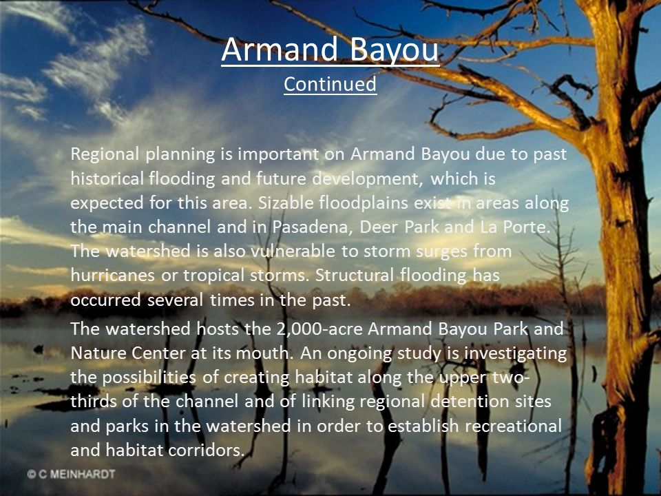 Armand Bayou Continued Things To Do Visitors to Armand Bayou Nature Center enjoy a variety of fun and educational activities.