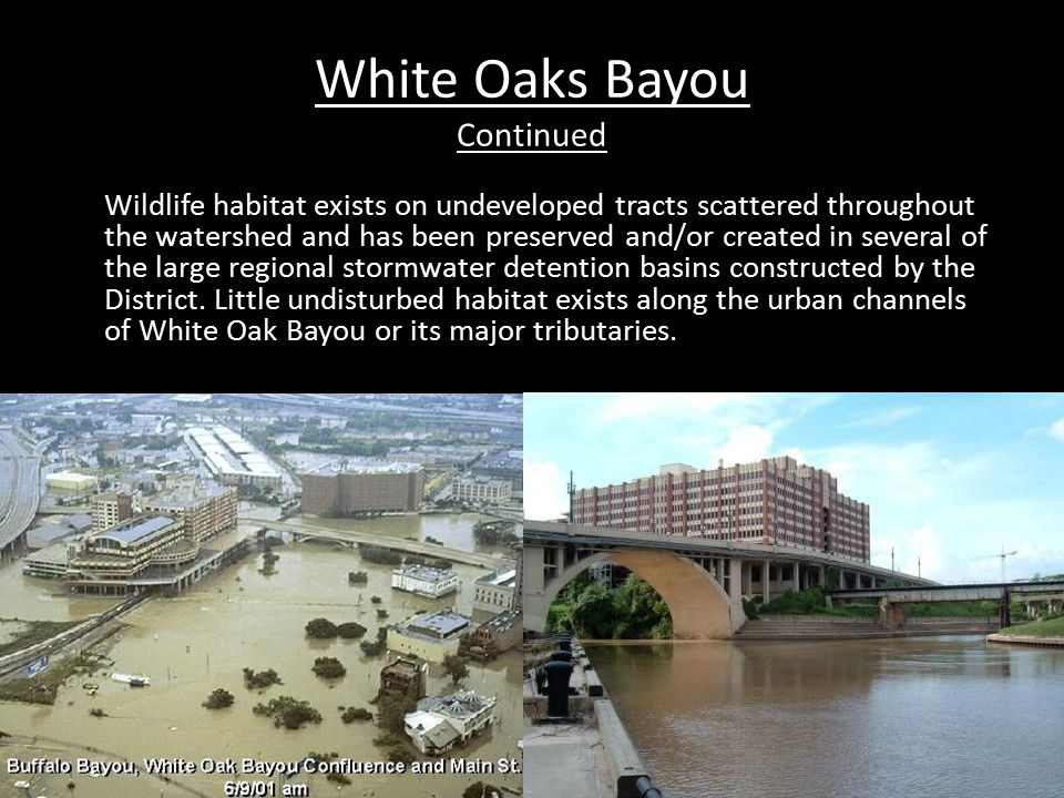 White Oak Bayou Continued Drainage Area : 111 Sq.