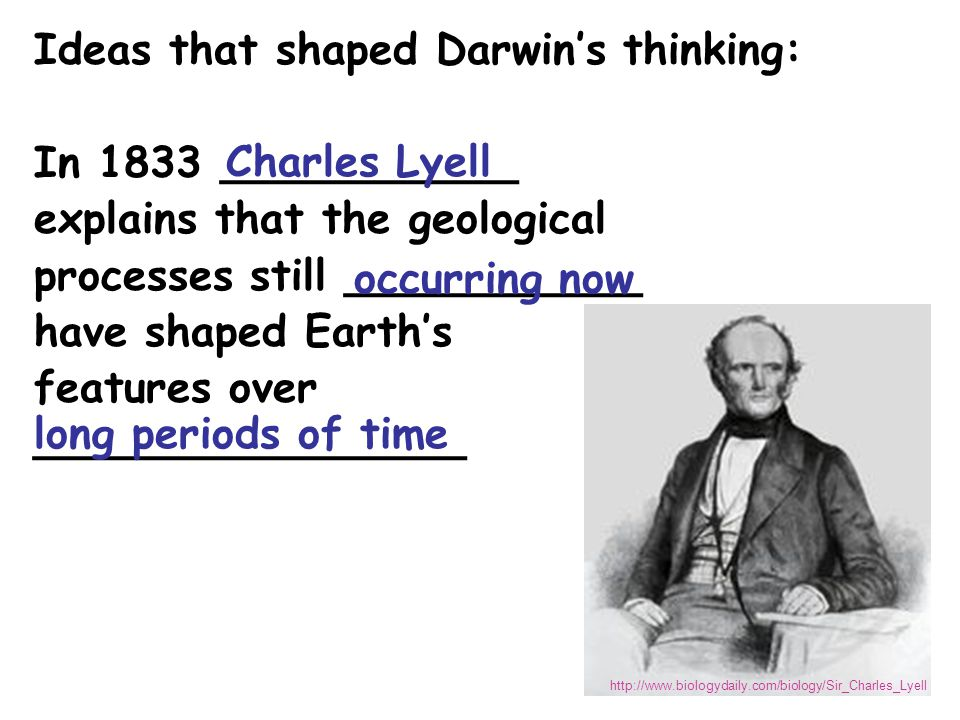 Ideas that shaped Darwin's thinking: http://wrgis.wr.usgs.gov/docs/usgsnps/animate/A08.gif Theory of Pangaea …and continental drift