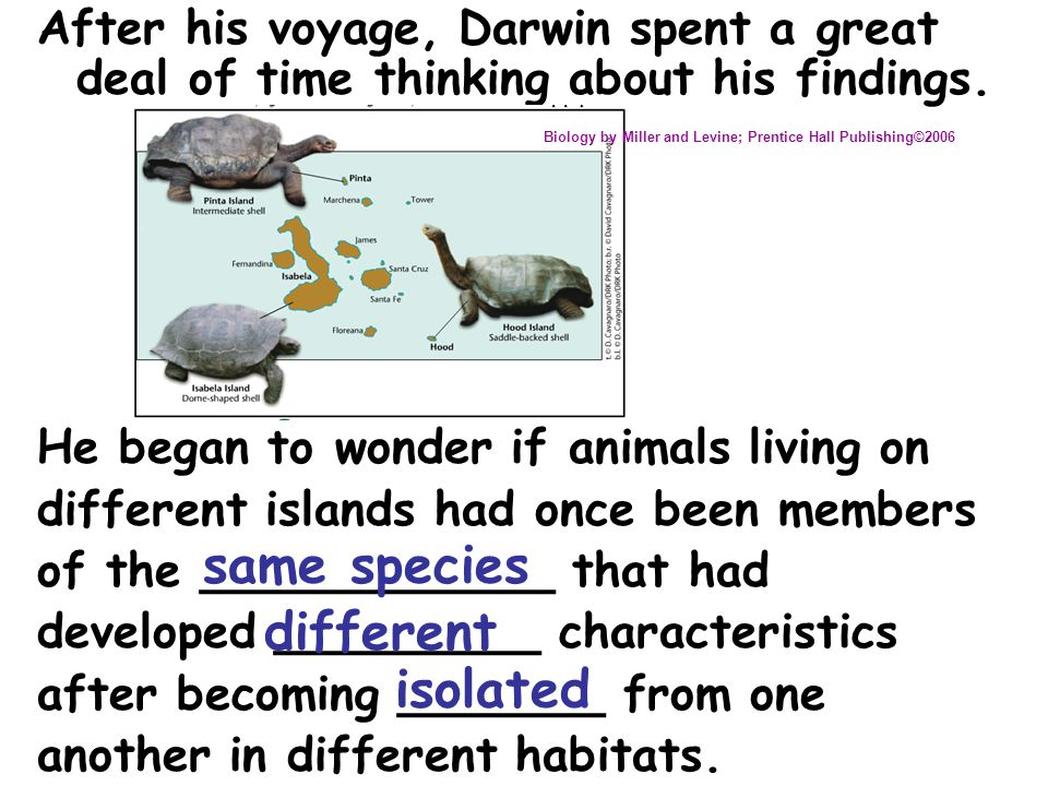 Darwin's Theory of Evolution Ideas that Shaped Darwin's Thinking Chapter 15-2 Image from: Biology by Miller and Levine; Prentice Hall Publishing©2006