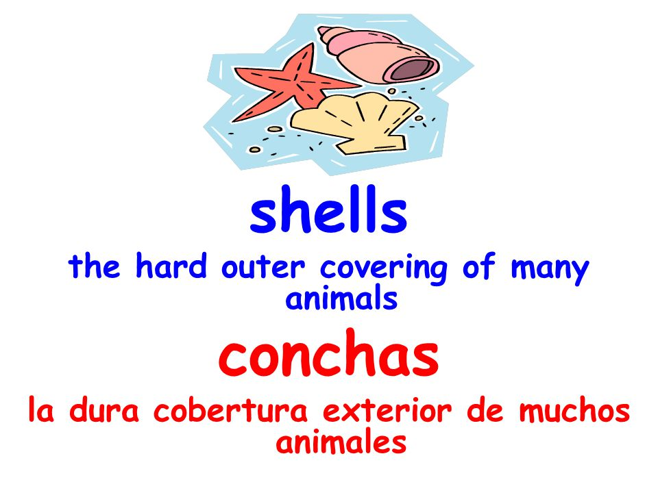 sort arrange or order by classes or categories clasificar ordenar por clases o catergorias