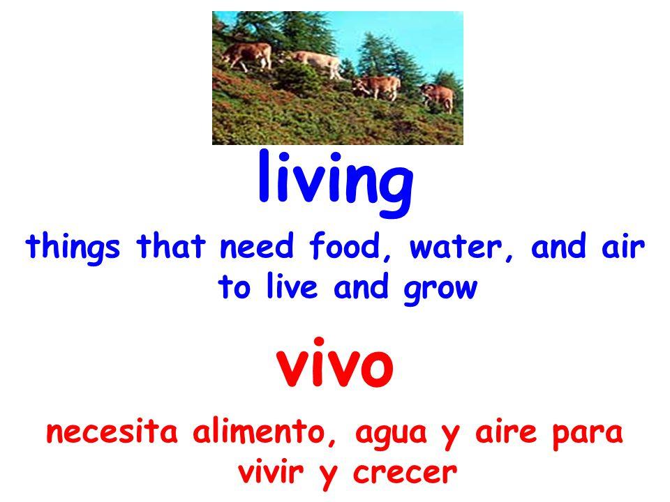 nonliving not needing food, water, and air and not growing no vivo no necesita ni alimento, ni agua, ni aire y no crece