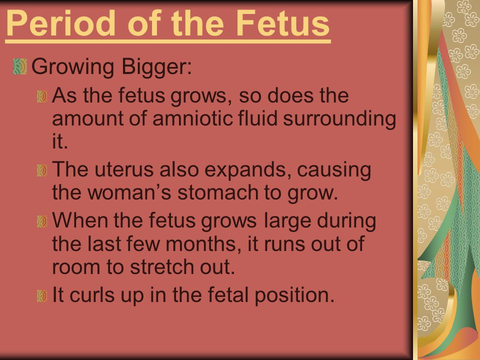 Period of the Fetus Staying Active: Fetus can use all 5 senses: thumb sucking, coughing, sneezing, yawning, kicking, hiccupping, and crying.