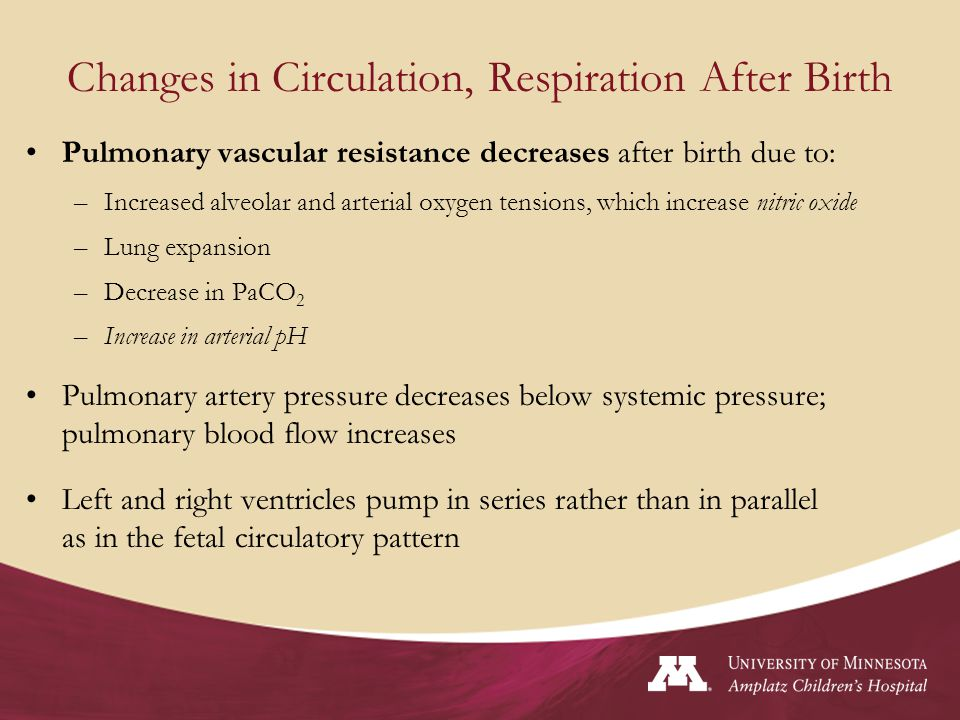 Normal Circulation Closure of Umbilical arteries w/in minutes after birth Ligation of umbilical vein (clamped cord) Closure of PDA (minutes to days) Closure of Foramen Ovale due to increased pressure in Left Atrium and Decreased pressures in Right Atrium