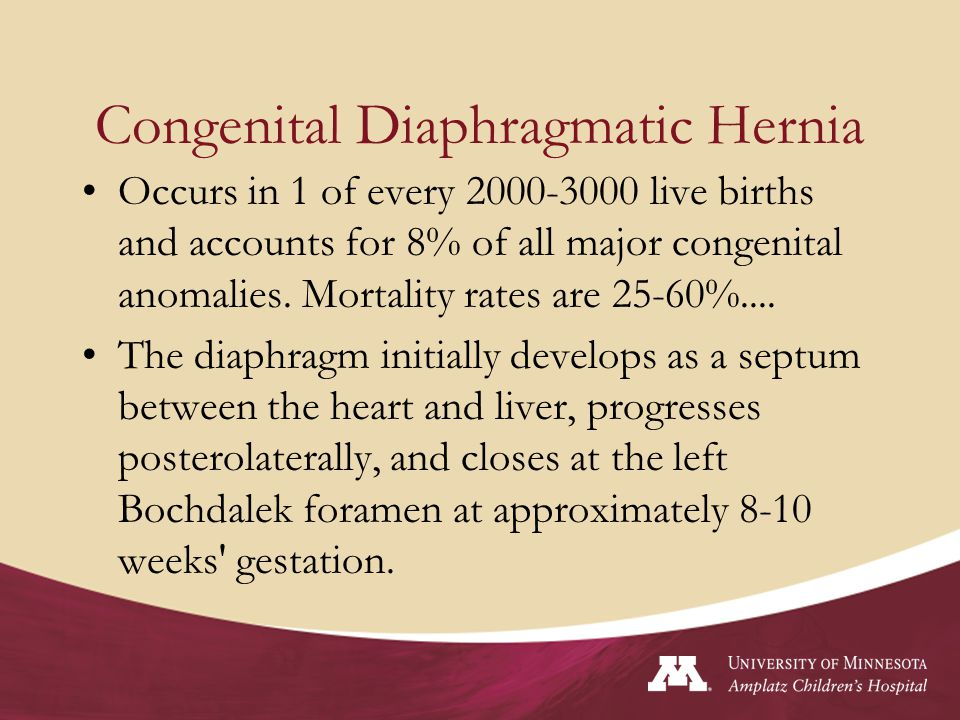 A severe CDH is believed to occur during the pseudoglandular stage of lung development.