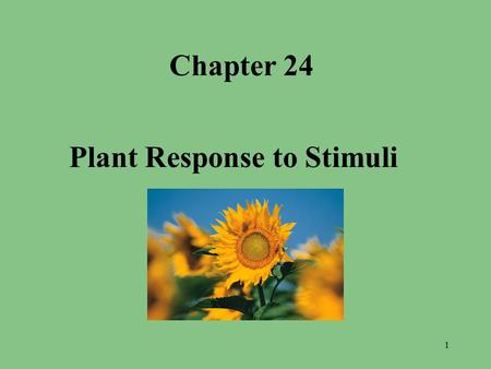 Chapter 24 Plant Response to Stimuli 1. Objectives – What you will need to know from this section 1. 1. Describe the organs used by plants to respond.