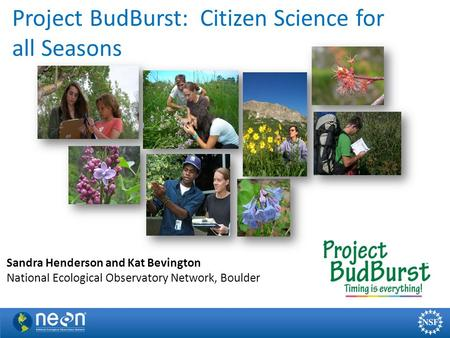 Project BudBurst: Citizen Science for all Seasons Sandra Henderson and Kat Bevington National Ecological Observatory Network, Boulder.