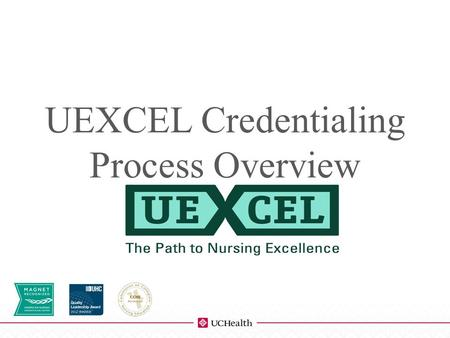 SERVICE AREA (Edit this in the Master Slide Area) UEXCEL Credentialing Process Overview SUBTITLE.