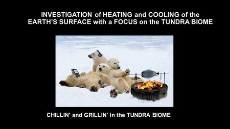 INVESTIGATION of HEATING and COOLING of the EARTH'S SURFACE with a FOCUS on the TUNDRA BIOME CHILLIN' and GRILLIN' in the TUNDRA BIOME.