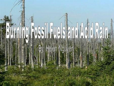 What are fossil fuels? Fossil fuels are naturally accruing fuels, these are usually extracted for energy purposes. Fossil fuels are formed when natural.