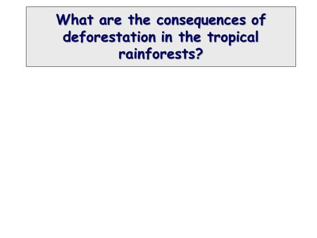 What are the consequences of deforestation in the tropical rainforests?
