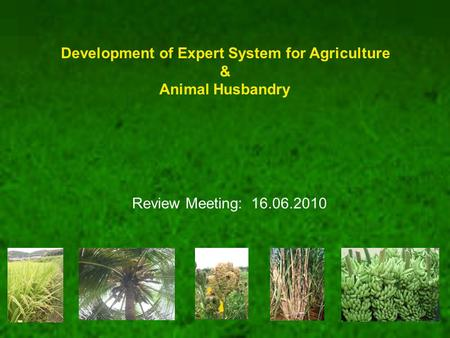 Development of Expert System for Agriculture & Animal Husbandry Review Meeting: 16.06.2010.