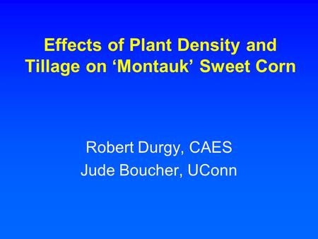 Effects of Plant Density and Tillage on 'Montauk' Sweet Corn Robert Durgy, CAES Jude Boucher, UConn.