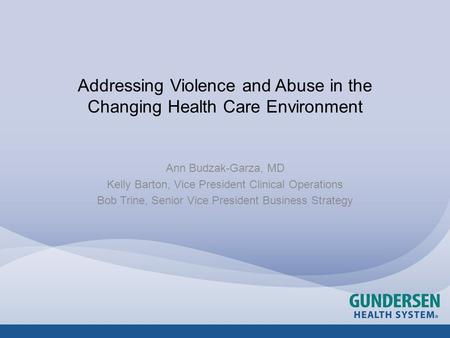 Addressing Violence and Abuse in the Changing Health Care Environment Ann Budzak-Garza, MD Kelly Barton, Vice President Clinical Operations Bob Trine,