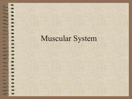 Muscular System. Agriculture, Food, and, Natural Resource Standards Addressed AS.01.01. Evaluate the development and implications of animal origin, domestication.