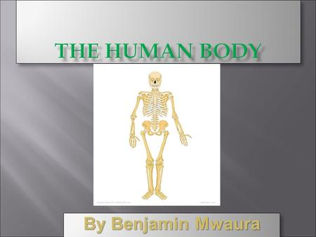 By Benjamin Mwaura This presentation will tell you about all the parts of the human body, referred as organs. This will also explain how these different.