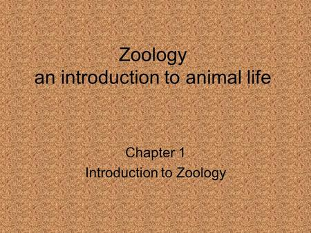Zoology an introduction to animal life Chapter 1 Introduction to Zoology.