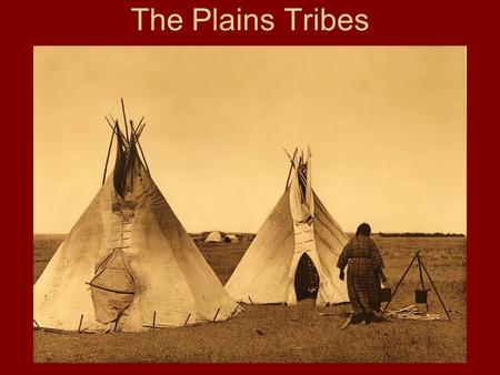 The Plains Tribes. The Tonkawas Were a group of independent bands Located on Edwards plateau to north of the Brazos River –Pushed off land by other tribes.