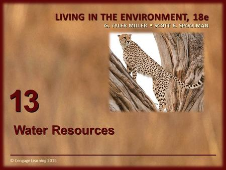 © Cengage Learning 2015 LIVING IN THE ENVIRONMENT, 18e G. TYLER MILLER SCOTT E. SPOOLMAN © Cengage Learning 2015 13 Water Resources.