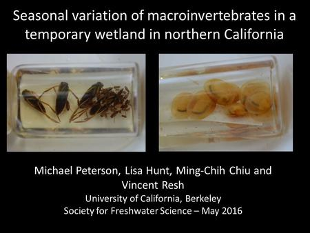 Seasonal variation of macroinvertebrates in a temporary wetland in northern California Michael Peterson, Lisa Hunt, Ming-Chih Chiu and Vincent Resh University.